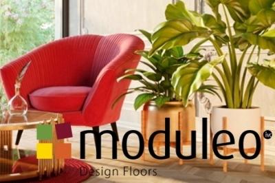 moduleo_news